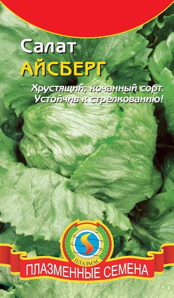 Выращивание салатов и их сорта 156