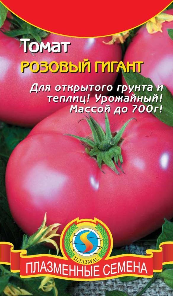 kak-virastit-rozovie-tomati