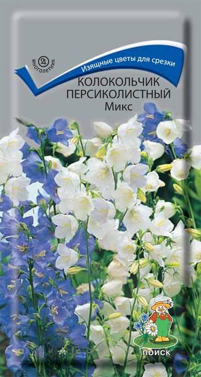 Что за цветок поиск по