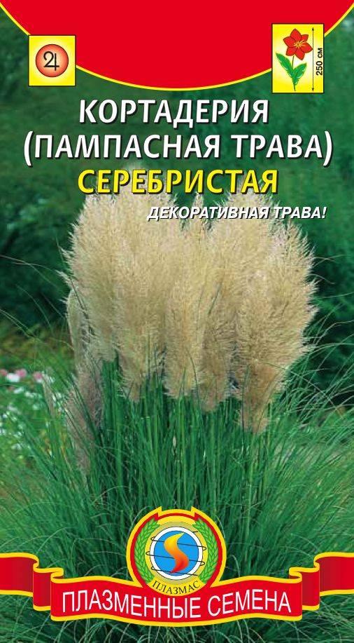 Куплю семена декоративной травы