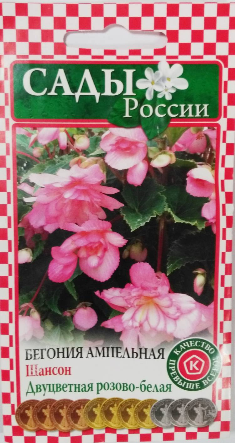 Оранжевых гербер, цветы россии челябинск